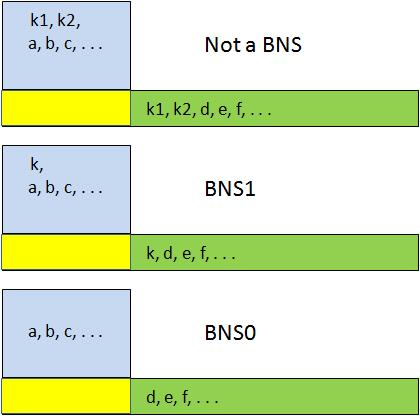 BNS1 and BNS0